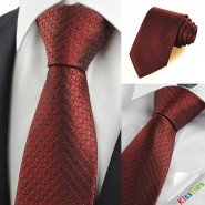 New Dark Red Burgundy Checked Mens Tie Necktie Wedding Party Holiday Gift KT0055