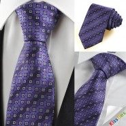 Purple Bronze Coin Checked Antique JACQUARD Mens Tie Necktie Holiday Gift KT0080