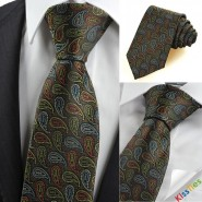 New Colorful Paisley Black Mens Tie Necktie Novelty Wedding Holiday Gift KT0103