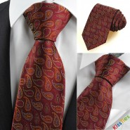 Colorful Paisley Red Scarlet Burgundy Mens Tie Necktie Wedding Year Gift KT0105