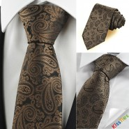 New Brown Paisley Exotic JACQUARD Mens Tie Suit Necktie Wedding Party Gift KT0119