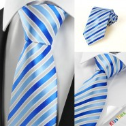 Luxury Striped Royal Blue JACQUARD Mens Tie Necktie Wedding Holiday Gift #0029