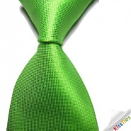 New Solid Spring Green Checked JACQUARD WOVEN Mens Tie Necktie